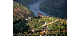 La Pesquera Winery