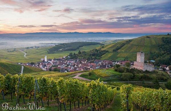 _Alzacja - Francja