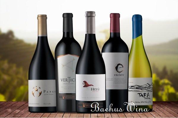 Ventisquero Wina Chile
