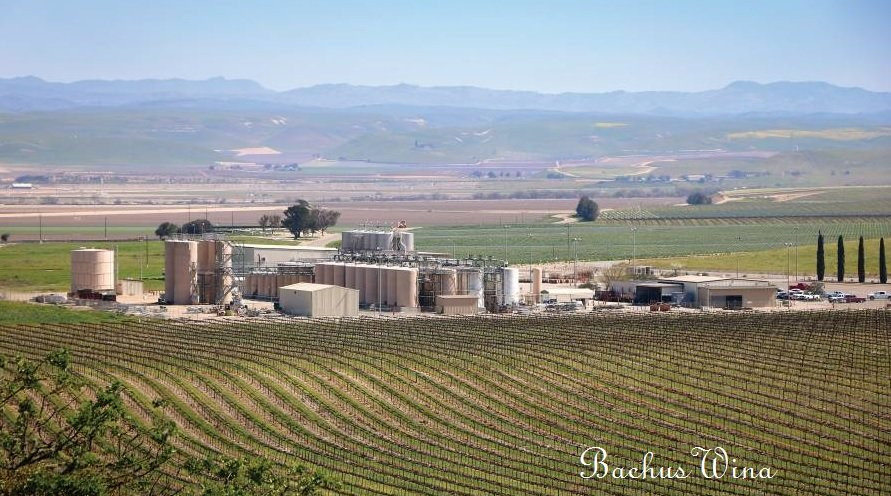 Delicato Family Vineyards Kalifornia