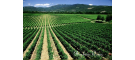 Genagricola Wines