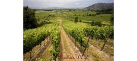 Ochagavia Wines